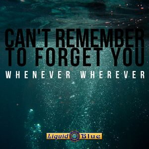 Cant Remember To Forget You - Liquid Blue