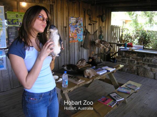 2004-02-08 Hobart 007