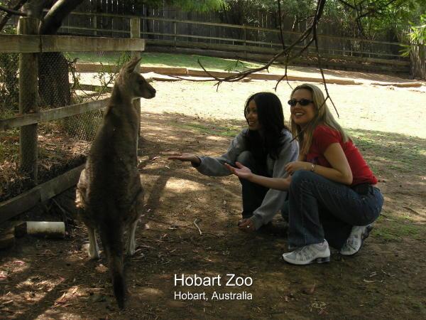 2004-02-08 Hobart 010