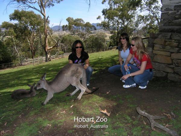 2004-02-08 Hobart 013