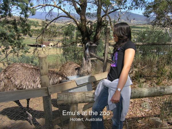 2004-02-08 Hobart 016