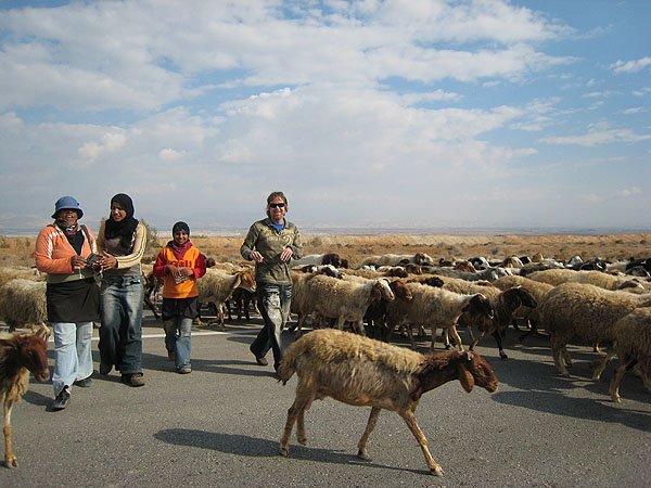2007-12-19 Jericho Palestine 005