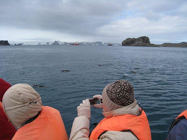 2008-03-13 King George Island Antarctica 008