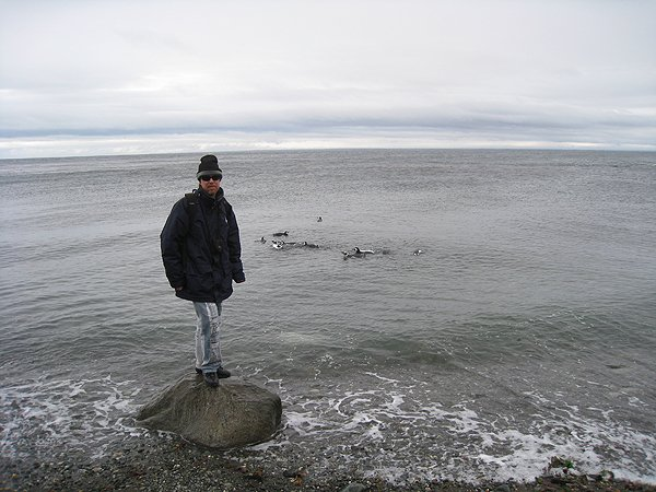 2008-04-06 Punta Arenas Magdalena Island Chile 007