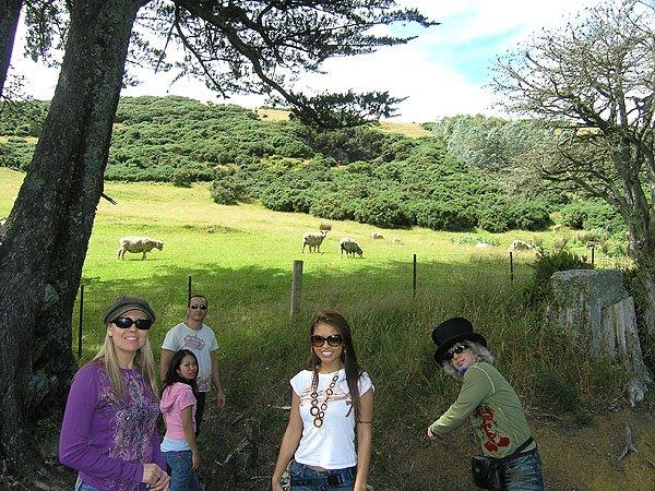 2009-02-06 Dunedin New Zealand 024