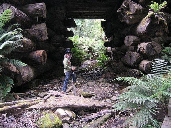 2009-02-18 Hobart Australia 003
