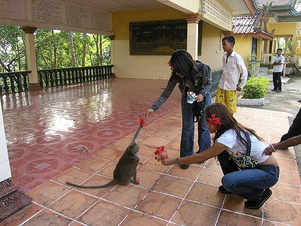 2009-03-13 Sihanoukville Cambodia 017