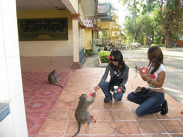2009-03-13 Sihanoukville Cambodia 023