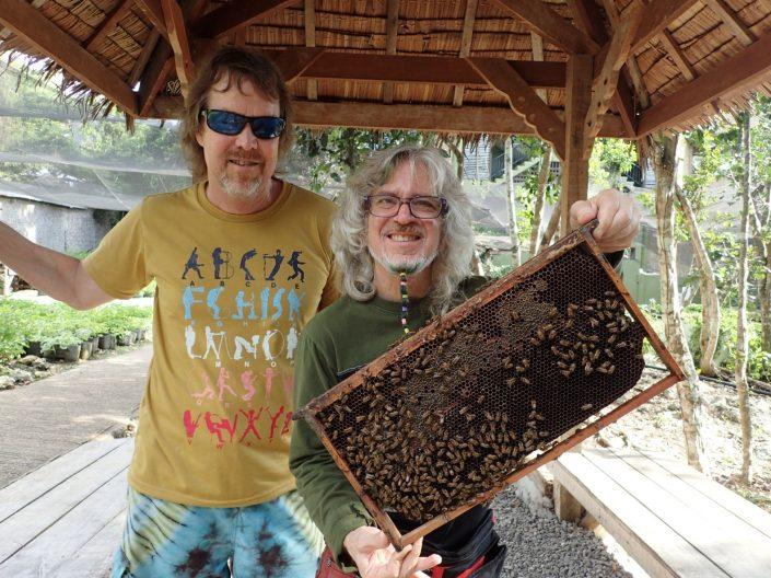 2016-10-06 Bohol Bee Farm Dauis Panglao Philippines (4)