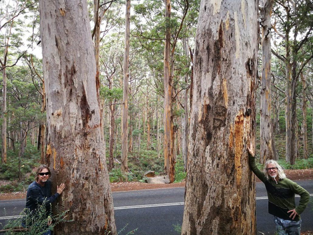 2018-04-23 Leeuwin Naturaliste National Park WA Australia (44)